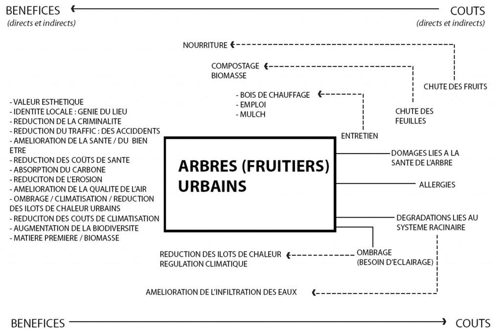 Arbre fruitier en ville copy